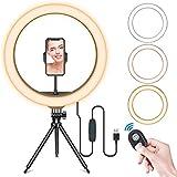 BFGTOR 13' LED Anillo de Luz de Escritorio, Aro de Luz con Trípode, 3 Modos de luz y 10 Niveles de Brillo,Wireless Control Remoto y Recargable USB, Móvil Selfie, Youtube, TIK Tok Live