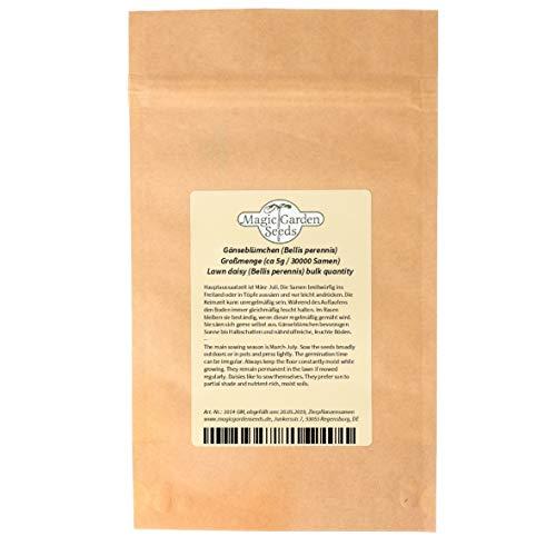 Gänseblümchen (Bellis perennis) Maßliebchen Tausendschön Margritli Großmenge (30000 Samen / 5g)