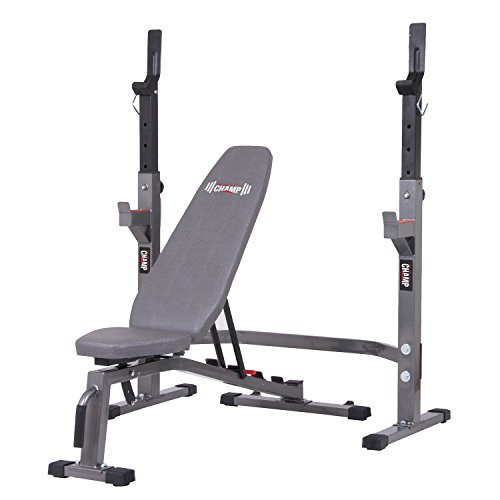 Body Champ Two Piece Set Olympic Weight Bench with Squat Rack PRO3900, Grey New Hampshire