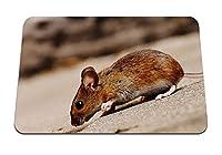 22cmx18cm マウスパッド (マウスげっ歯類の丘下り坂) パターンカスタムの マウスパッド