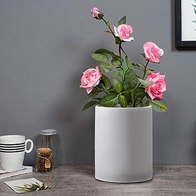 Flower Pot Scrub Straight Planting Plant Cerami...