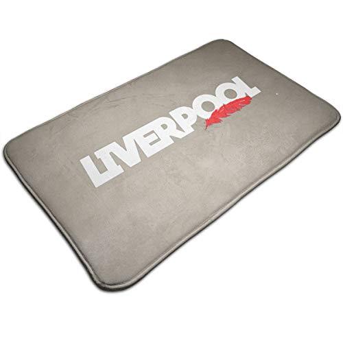"""Joy Wholesale Liverpool Feather Doormat 19.5"""" * 31.5"""" Non-Slip Stain Fade Resistant Area Rugs Door Mat Outdoor Indoor Mat"""