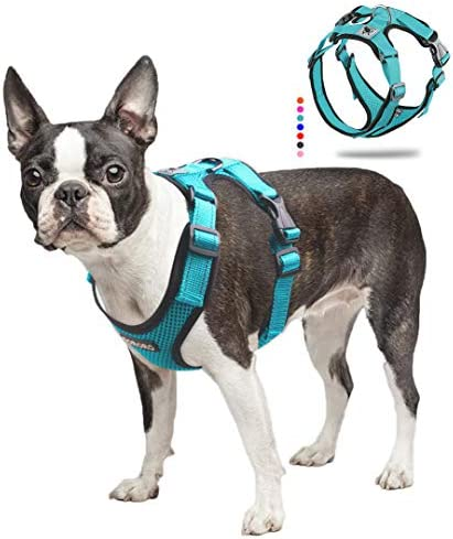 ACKERPET Soft Dog Vest Harness No Pull Small Pet Vest Harnesses with Mesh Padded Reflective product image