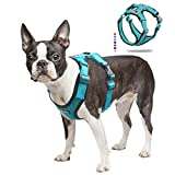 ACKERPET Soft Dog Vest Harness No Pull Small Pet Vest Harnesses with Mesh Padded Reflective Adjustable Pet Vest Front Clip Easy Control Step-in Pet Harnesse or Puppy Small Medium Dogs (M,Turquoise)…