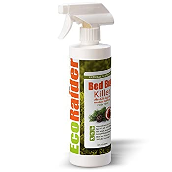 Best saybyebugs bed bug spray Reviews