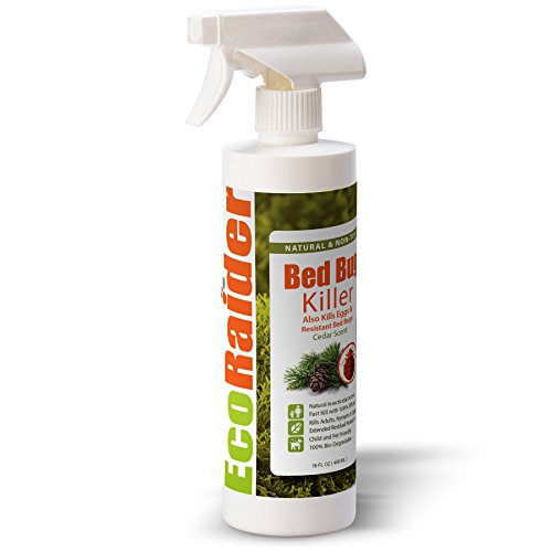 Bed Bug Killer by EcoRaider 16 oz, Fast and Sure Kill with Extended Residual Protection, Natural & Non-Toxic, Child...