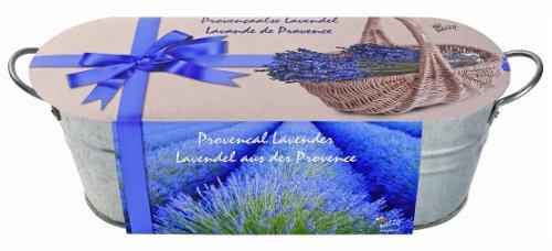 Mini-Küchengarten. Lavendel: Zink-Blumenkasten (10 cm hoch, 30 cm lang) mit Saatmischung, Pflanzenerde und Pflegeanleitung