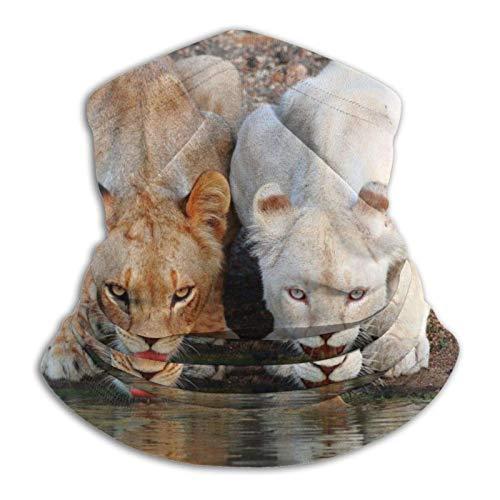 KKLDOGS Braga de microfibra para el cuello, diseño de león salvaje, para clima frío, invierno, deportes al aire libre, pasamontañas, unisex