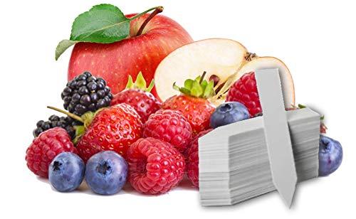 Fruit Combo Pack Raspberry, BlackBerry, Blueberry, Strawberry, Apple 525+ Seeds UPC 695928808748 & 4 Free Plant Markers