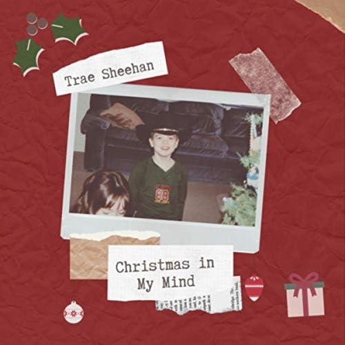 Trae Sheehan