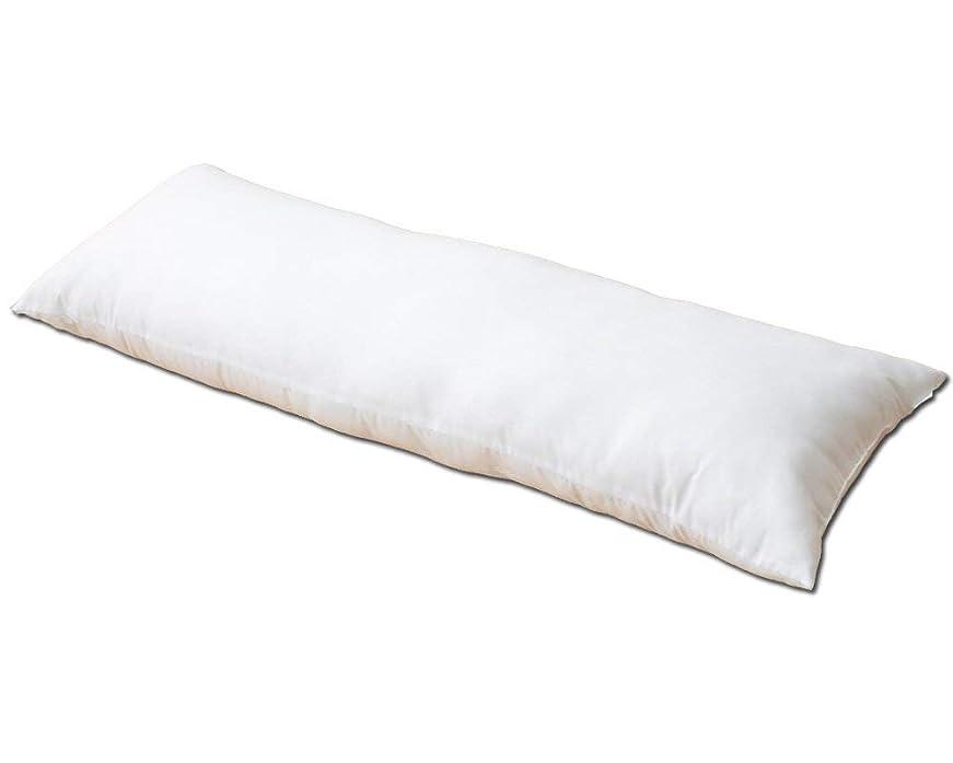 つぼみ発表数学者枕 ロング 抱き枕 洗える 2way「ヌード枕ロング」【GL】(#9830147) サイズ:約43×120cm【※枕本体のみの販売です】
