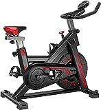 SKYWPOJU Bicicleta estática, Bicicleta de Fitness Bicicleta estática de Interior Ajuste Continuo de la Resistencia Peso del Usuario hasta 150 kg / 330 Libras