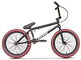 LFSTY Bicicleta BMX para niños y Adultos, niños y Principiantes a Jinetes avanzados, Ruedas de 20 Pulgadas, Marco de Acero de Cromo molibdeno de Alta Resistencia, Engranaje BMX 25x9T