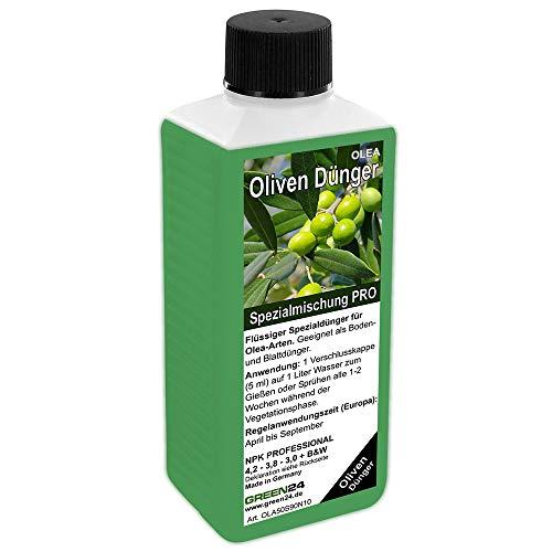 GREEN24 Fertilizzante per olivi, High-Tech Olea Npk, per Piante in Aiuola O in Vaso