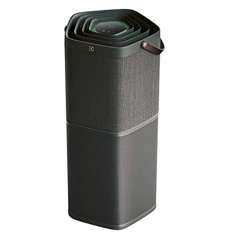 Electrolux PA91-604DG Purificatore d'Aria Connesso con Protezione Antibatteria e Filtro Agli Odori Sgradevoli, Fino a 129 mq, 17 Decibel, Grigio (Antracite)