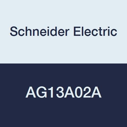 Schneider Electric AG13A02A Tac Erie Spring Return Two-Position General Close-Off Actuator with End Switch, Normally Closed