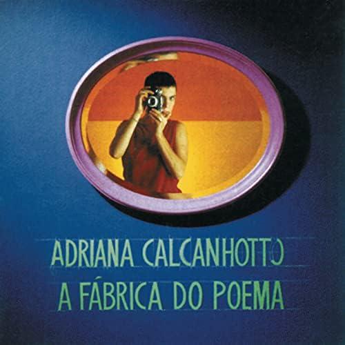Adriana Calcanhotto