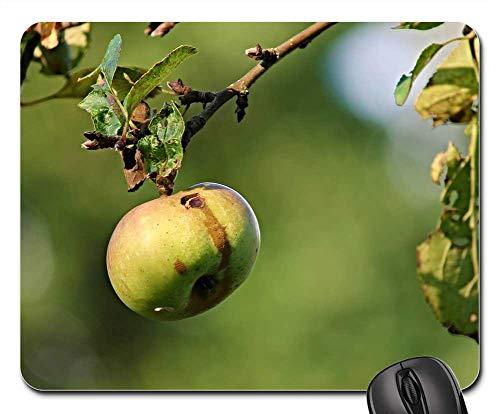 Mouse Pad - Apple Nature Worm Hole Fruit Vitamins Frisch