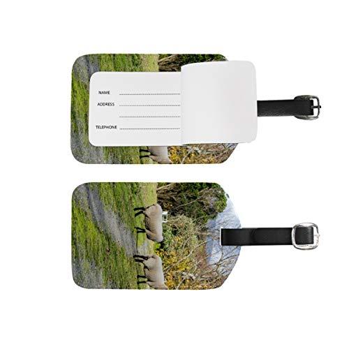 Etichette per bagagli, nome indirizzo, 2 pezzi portatili; set di etichette identificative portatili, per biglietti a scacchi, accessori da viaggio per valigie bagagli pecore montagne