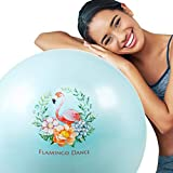 SAIYI Palla Sfera di Yoga Sfera di Esercitazione Anti Burst Stabilità Swiss Ball Fitness Pilates...