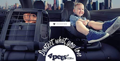4pets Caree - Autotransportbox für Hunde (Smoked Pearl)
