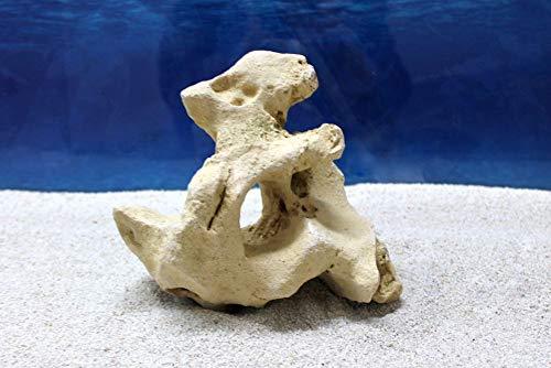 Amtra Fels Gallura Beige mit Loch S Dekoration Aquarium Deko Versteck Steine Felsen Garnelen Fische Dekofigur Dekosteine