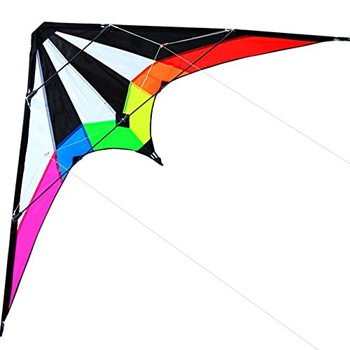 Hengda Kite-Lightning 48 Inch Dual Line Stunt Kite For Kids and Adults, outdoor sports,Beach and Fun sport kite,Handle,Line,and Bag included