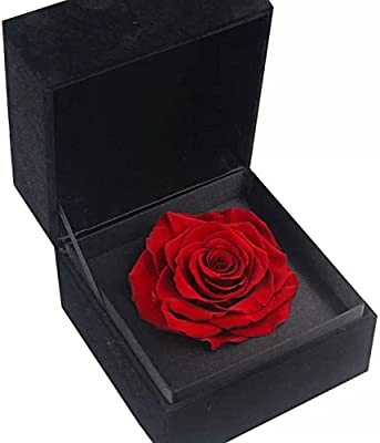 Preserved Flowers Gift for Valentine'sDay,Birthdaygift,Mother's Day etc,Preserved Rose Gift Box (Black Box) (Red Rose)