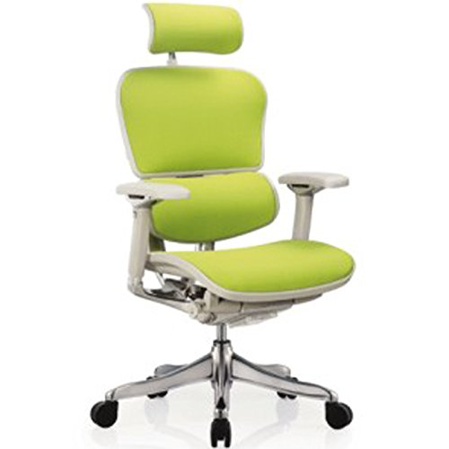 Ergohuman Executive Chairs (with Grey Frame.Green Fabric)