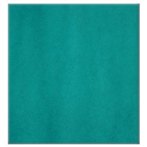 Bielmeier 028002 Waschbarer Vorfilter