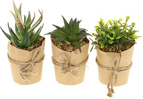com-four® 3X Plantas Artificiales, Plantas Decorativas engañosamente Reales en jarrón de Papel, Plantas Artificiales para casa, jardín, balcón y Oficina [la selección varía] (03 Pieza - tamaño M)