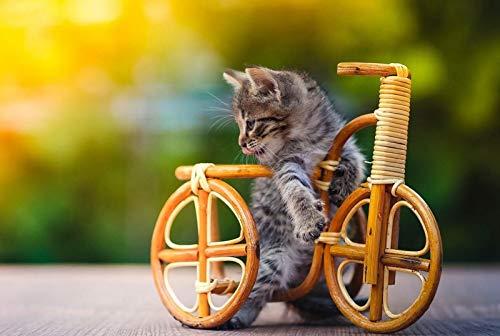 Puzzle 500 Piezas para Adultos Niños 500 Piezas Brain Challenge Puzzle De Madera Personaje De Niña De Fantasía Educativo para Niños Bicicleta gatito