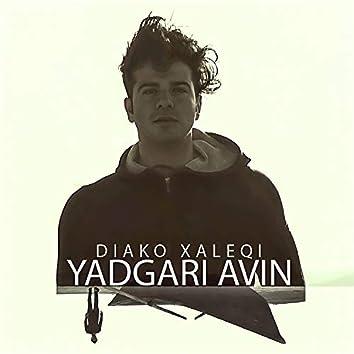 Yadgari Avin