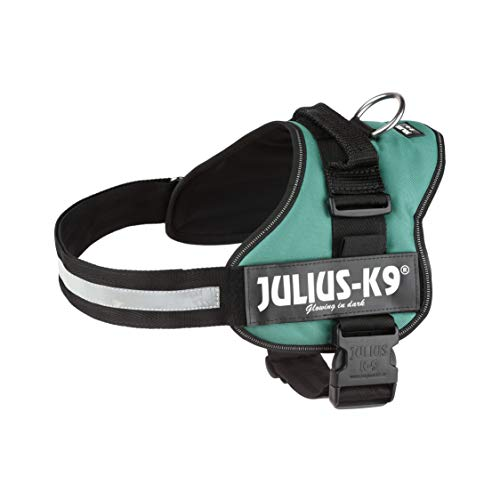 Julius-K9, Pettorina K9, Taglia: 1, Colore: Verde Scuro