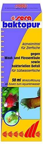 sera 02550 baktopur  50 ml - Arzneimittel für Zierfische bei bakteriellen Erkrankungen, wie die Columnaris-Krankheit, Flossenfäule, Kiemenfäule sowie Infektionen