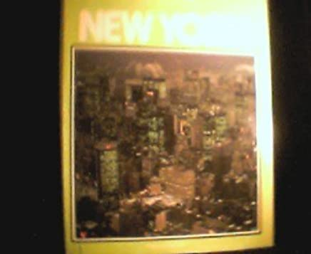 Image result for new york great cities anthony burgess