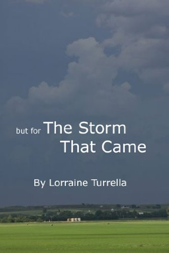 But For The Storm That Came (English Edition)