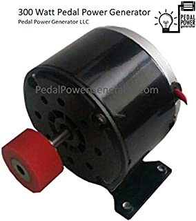 300 Watt Bicycle Generator Dynamo with Rubber polyeurethane Drive Roller