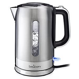 Brewberry Cordless Electric Kettle