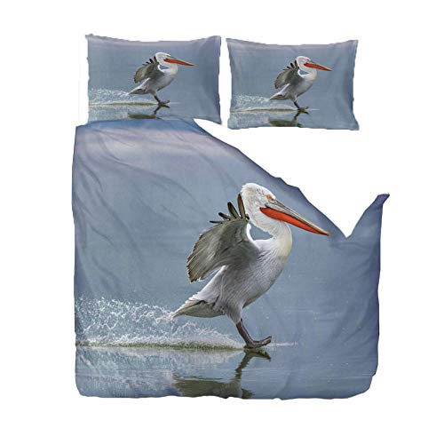 KAOLWY Double Duvet Covers Set Pelican 200x200cm With Zipper Closure Including 2 Pillowcase,Easy Care Machine Washable,Ultra-Soft Microfiber Duvet Cover