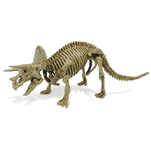 Unbekannt Geoworld 625304 – Set de Dr. Steve Hunters : Dino ausgrabungs – Tricératops Squelette, âge : 6 +, Taille : 21 cm