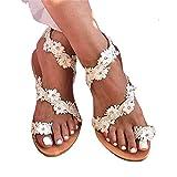 WNRGD Mujeres Sandalias Mujer Flor Flip Sweet Flip Flops Verano Femenino Cordón Moda Ladies Beach Zapatos Nice and Comfortable Sandals,EU 41