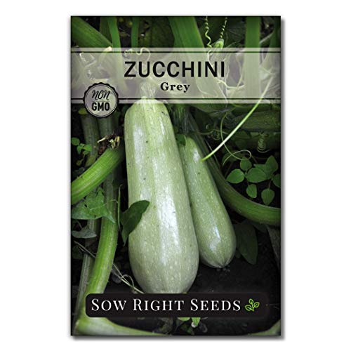 Sow Right Seeds - Grey Zucchini Seed for Planting - Non-GMO Heirloom Packet with Instructions to Plant a Home Vegetable Garden - Great Gardening Gift (1)