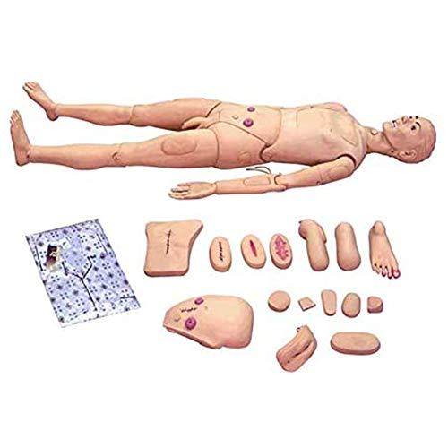Multifunktional Patientenversorgungssimulator Für Pflegerische Ausbildung Male and Female Nursing Doll Menschliches Anatomisches Modell for Medical Training Lebensgröße, Krankenpflege