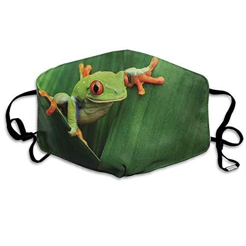 Fun-World Bequeme Winddichte Maske, süßer rotäugiger Frosch zwischen exotischen Makro-Big Leaves Wild Nature Night Animal Lebendige Farben