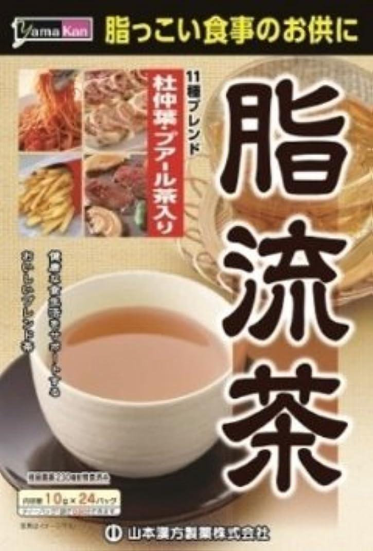 仕様感情滝【10個セット】山本漢方製薬 脂流茶 10gX24H ×10個セット