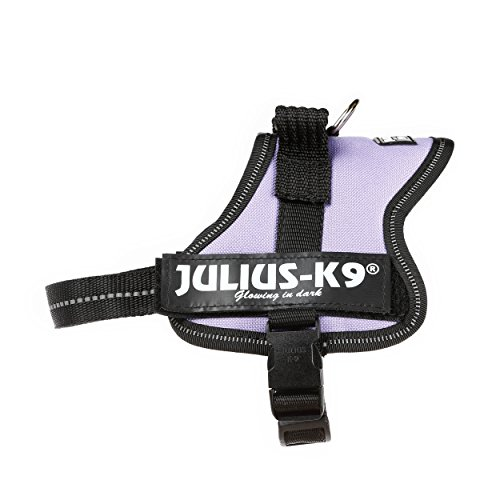 Powerharness Julius-K9, Purple, Mini-Mini