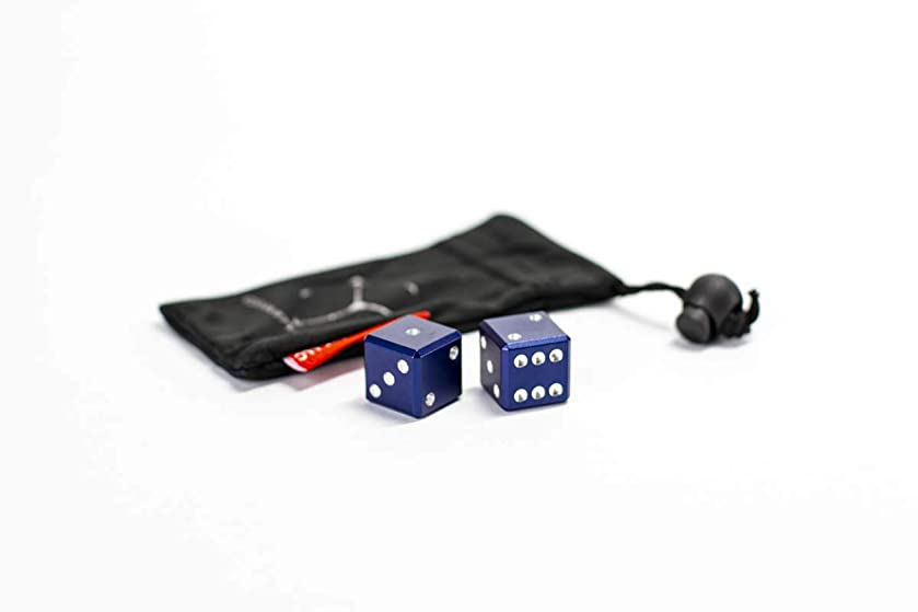 Metal D6 Dice 2 Dice - GRAVITY DICE v4 - With Carry Bag