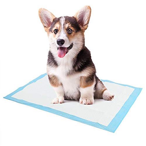 Pets Nappy Mat Puppy Pet Diapers Pad Super Absorbent Cat Dog Training Pee Pads Clean Supplies
