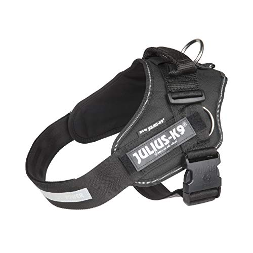 Julius-K9, IDC PowerHarness with Side Rings for Dogs